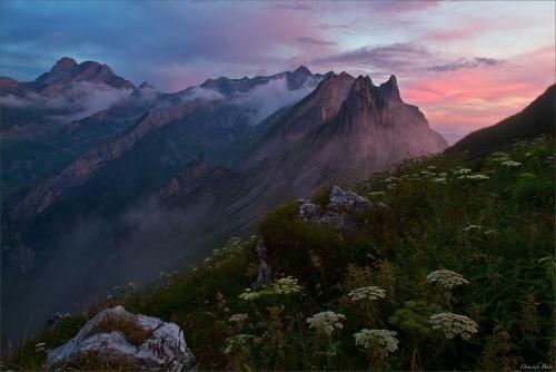 Alpstein Mountains in the morning Alpglow, Switzerland