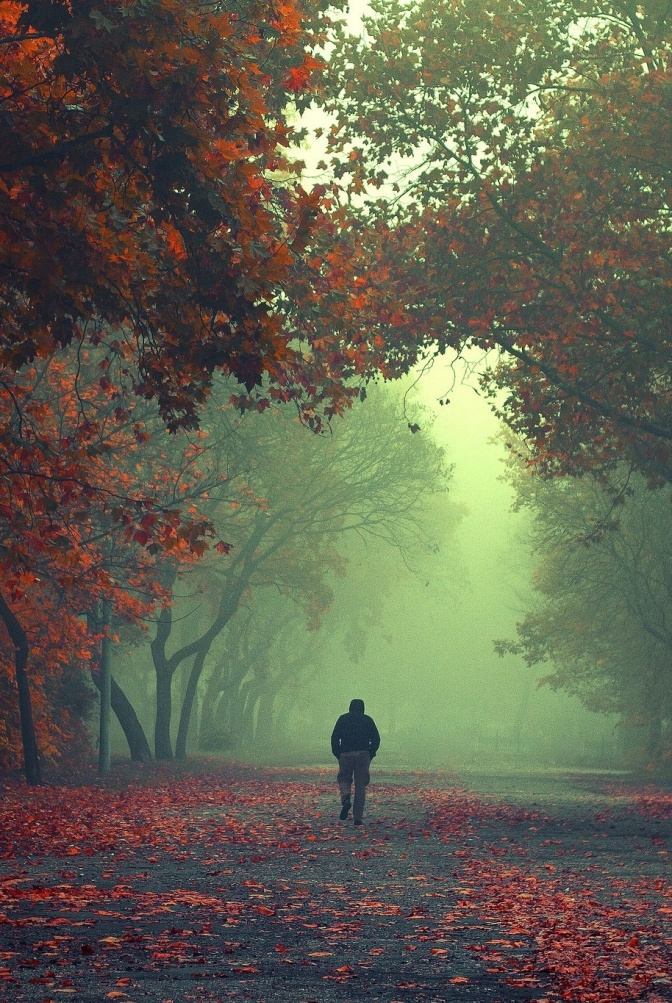 Walking Stranger by Ildiko Neer