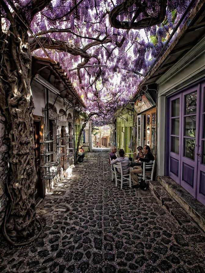 World's most beautiful and magical streets covered by flowers