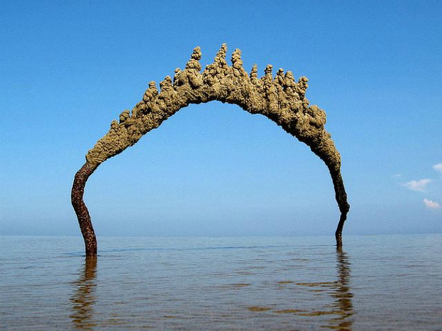 Matt Kaliner's spontaneous sand sculptures