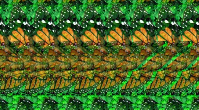 Beautiful 3D Butterflies – You can view the real image with a focused mind only.